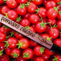 Kit 5 Matite SPROUT Pomodoro Ciliegino