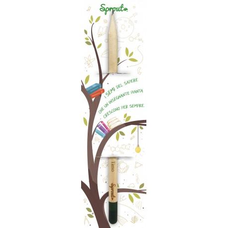 Sprout Scuola - I Semi del Sapere che un insegnante pianta...