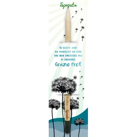 Sprout Scuola - In questi anni ha piantato un seme che non smetterà mai di crescere: Grazie Prof!