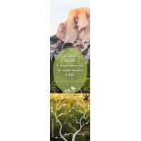 """""""Gli alberi e le rocce ti insegneranno cose che nessun maestro ti insegnerà"""" ( San Bernardo di Chiaravalle)"""
